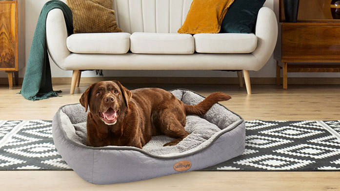 Silentnight Pets Ensure your dog sleeps soundly to pawfect dreams with a new orthopaedic, ultrabounce or Airmax pet bed by Silentnight.