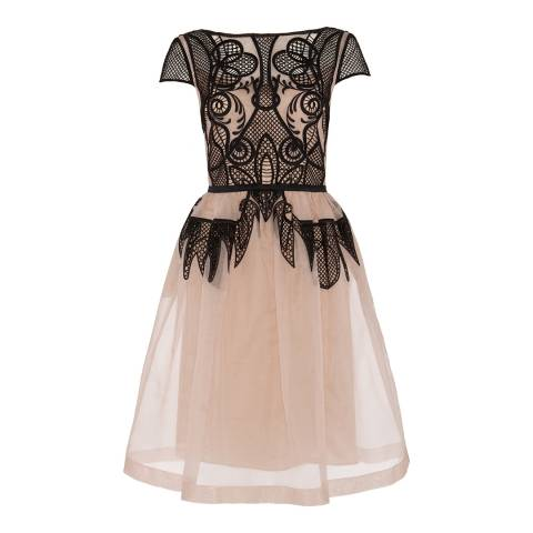 Temperley London Cream Maxime Embroidered Silk Organza Dress