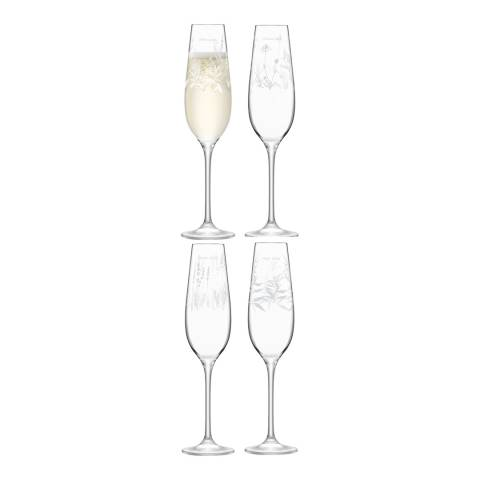 LSA Set of 4 RBG Kew Champagne Flutes, 235ml