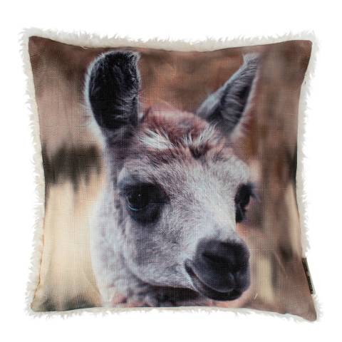Kilburn & Scott Cream Lama Photographic Faux Fur Cushion 40x40cm