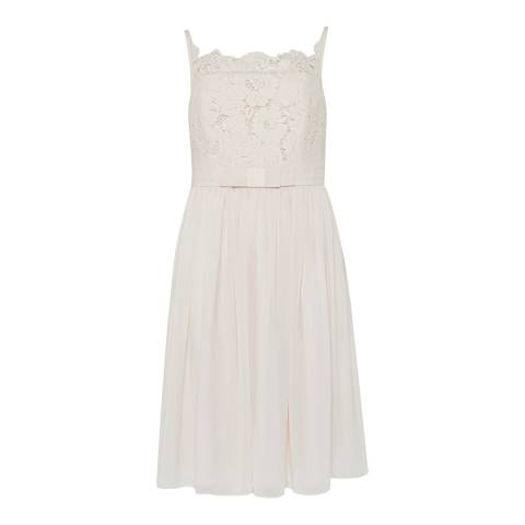 Ted Baker Baby Pink Mimee Lace Bodice Midi Dress