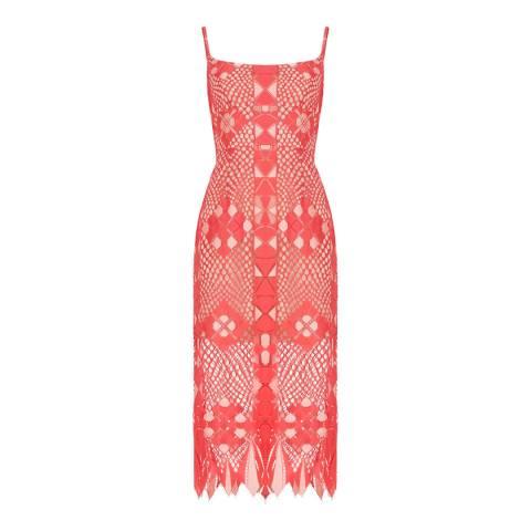 BCBG Red Knit Evening Dress