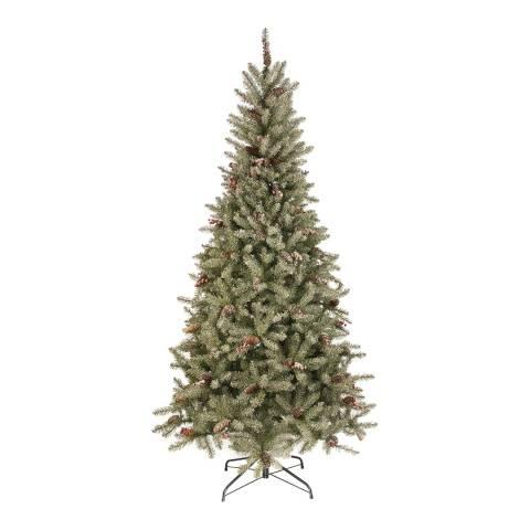 Festive Green Frosted Bristle Cone Tree 180cm
