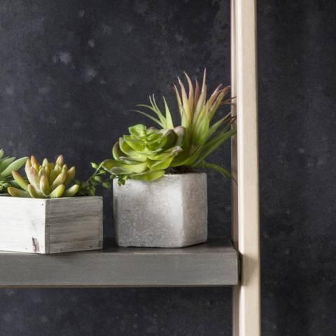 Gallery Green/Multi Faux Succulents In Square Stone Planter