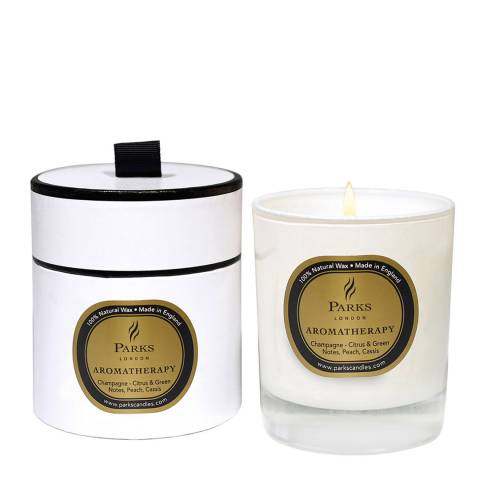 Parks London Champagne Aromatherapy Single Wick Candle