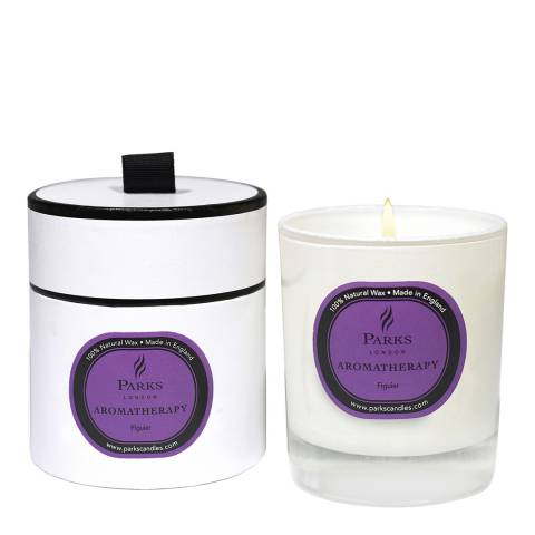 Parks London Fig Aromatherapy Single Wick Candle