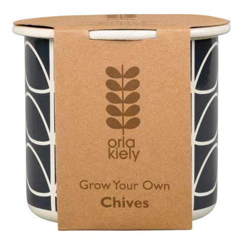 Orla Kiely Black GYO Chives Linear Stem Pot