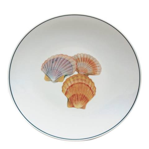 Jersey Pottery Seaflower Collection Set of 4 Salad Plates, 23cm, Scallop