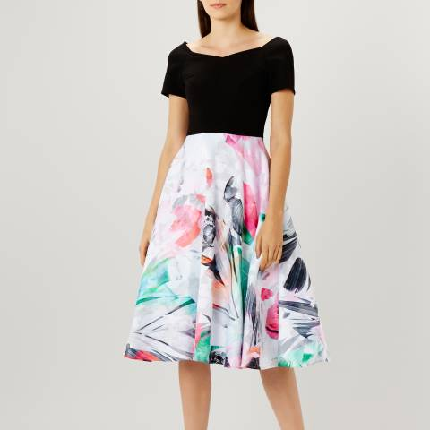 Coast Black/Multi Rafaella Printed Midi Dress