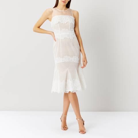 Coast Neutral Sarry Maselle Dress