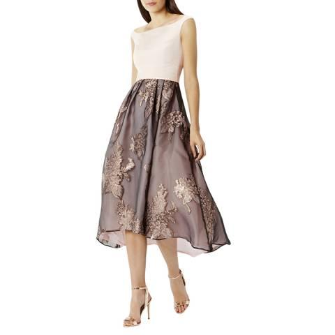 Coast Blush Ami Floral Roccabella Dress