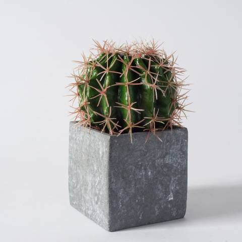 Gallery Faux Ball Cactus In Concrete Effect Cube