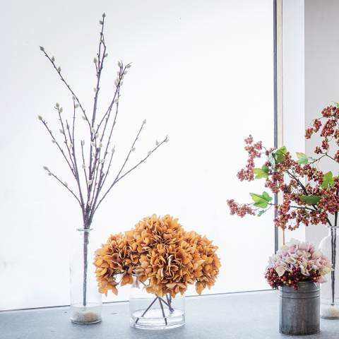Gallery Cotton Blossom With Glass Bottle
