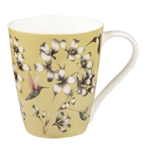 Harlequin Amazilia Gooseberry Aspen Mug, 425ml