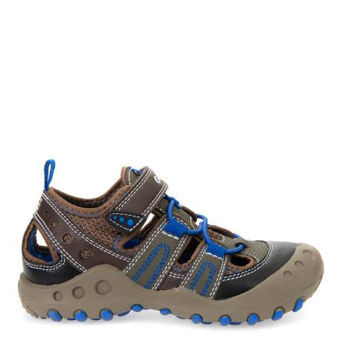 Geox Brown/Royal Blue J Sandals