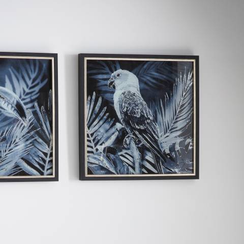 Gallery Midnight Birds I Framed Art 43x43cm