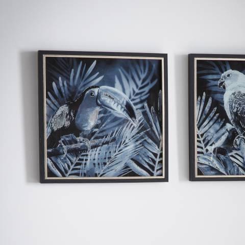 Gallery Midnight Birds II Framed Art 43x43cm