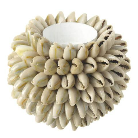 Parlane Light Brown Cowrie Shell Tealight Holder