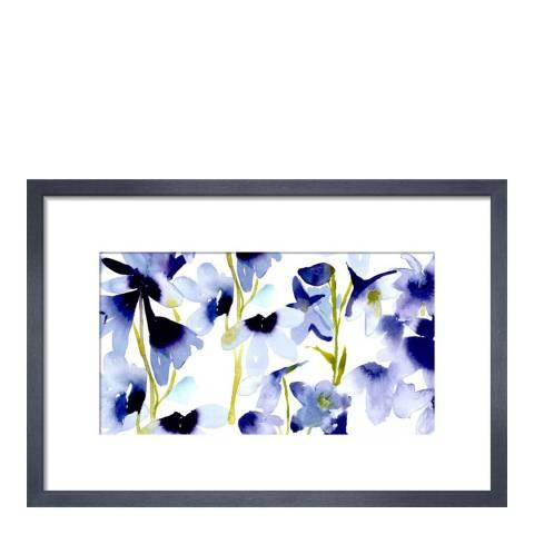 Paragon Prints Harebelle, bluebellgray, Framed Perspex Print 36x28cm