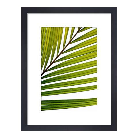 Paragon Prints Gratitude, Deborah Schenck, Framed Print 35.6x28cm