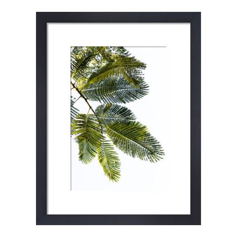 Paragon Prints Inspiration, Deborah Schenck, Framed Print 35.6x28cm