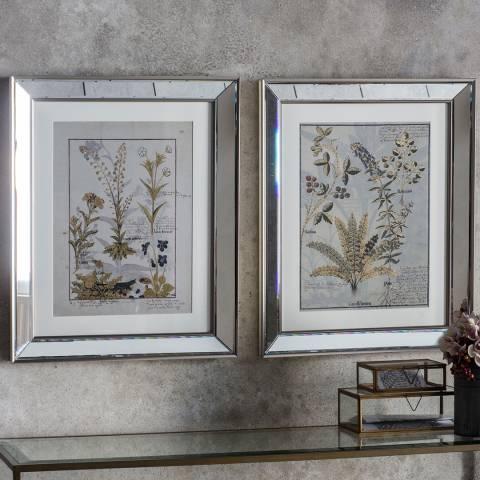 Gallery Set of 2 Botanica Floral I Framed Art 48x58cm