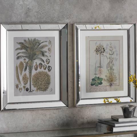Gallery Set of 2 Botanica Floral II Framed Art 48x58cm