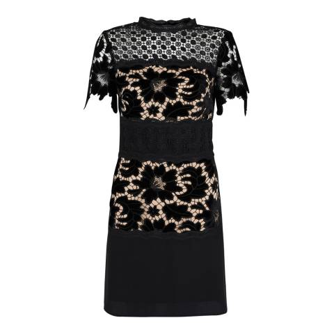 Coast Black Coco Lace Dress
