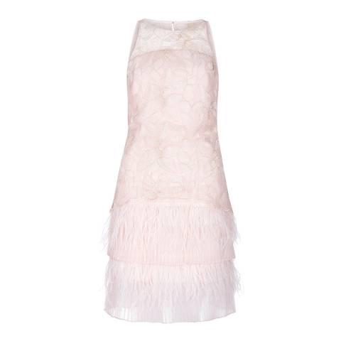 Coast Blush Polina Embroidered Feather Dress