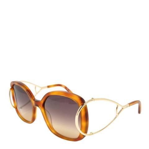 Chloe Women's Light Brown Chloe Sunglasses 56mm