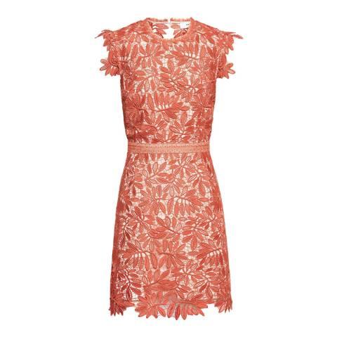 Reiss Coral Maika Lace Shift Dress