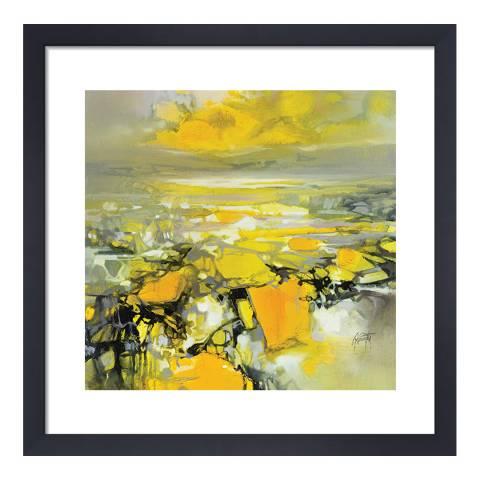 Scott Naismith Yellow Matter 2 Framed Print, 40x40cm