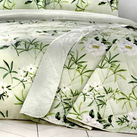 Dreams & Drapes Florence 229x195cm Bedspread, Green