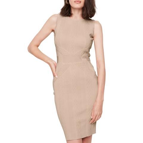 Damsel In A Dress Blush Klarissa Knit Dress