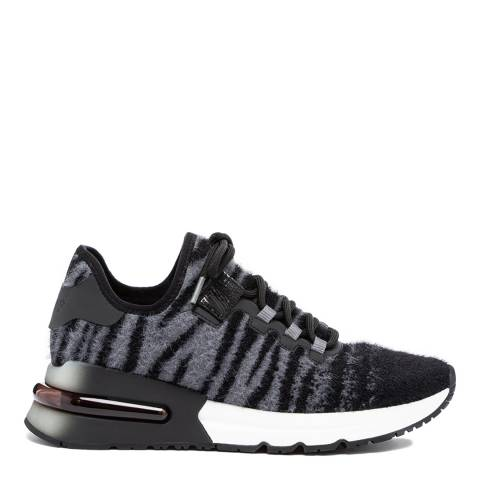 ASH Black/Grey Zebra Krush Sneakers