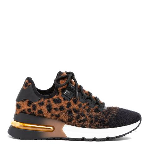 ASH Black Leopard Krush Sneakers
