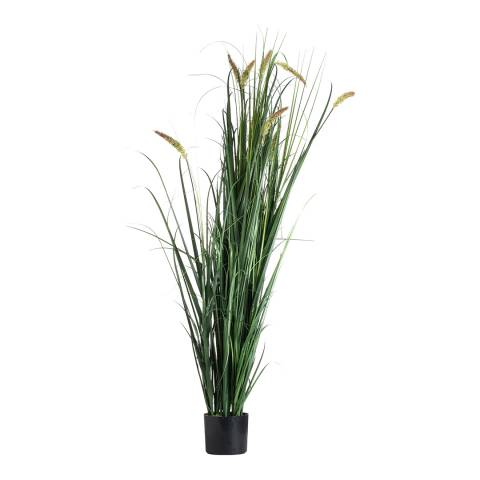 Hill Interiors Large Potted Meadow Grass