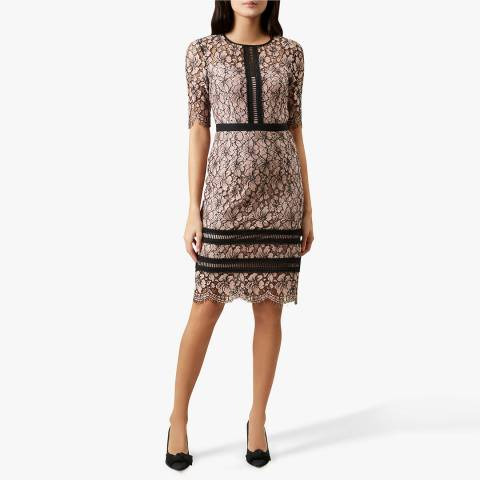 Hobbs London Pink Floral Lace Penny Dress