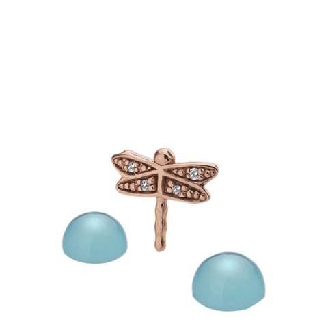 Anais Paris by Hot Diamonds Rose Gold Plated Dragonfly Charm with Blue Agate Cabochons