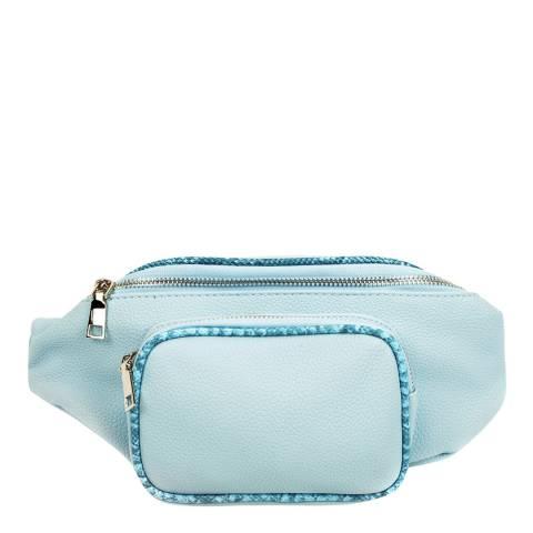 Carla Ferreri Blue Belt Bag