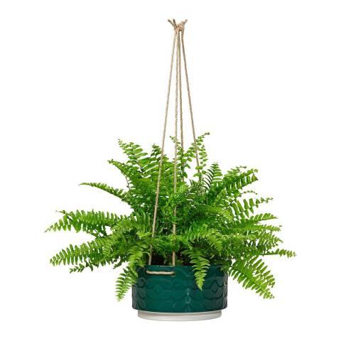 Orla Kiely Evergreen Sixties Stem Ceramic Hanging Pot