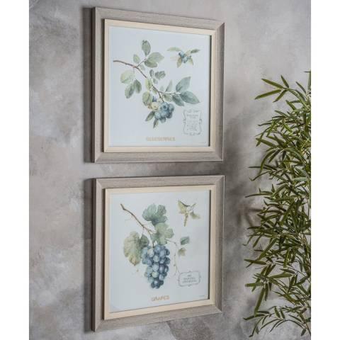 Gallery Berries Framed Art Set of 2 50x50cm