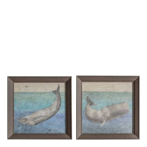 Gallery Textured Whale Framed Art Set of 2 36x36cm
