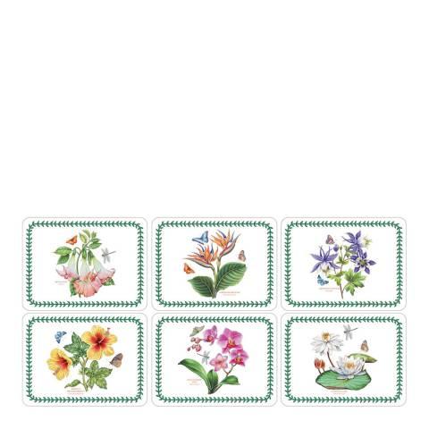 Pimpernel Set of 6 Exotic Botanic Garden Placemats