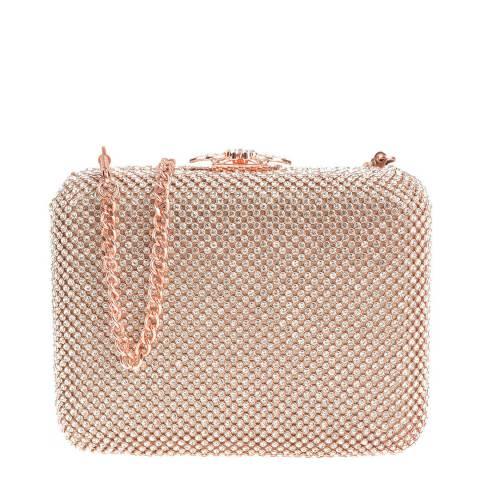 Carla Ferreri Champagne Crossbody Bag/Clutch