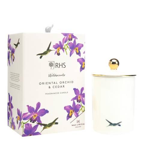Wax Lyrical Ceramic Candle Oriental Orchid & Cedar