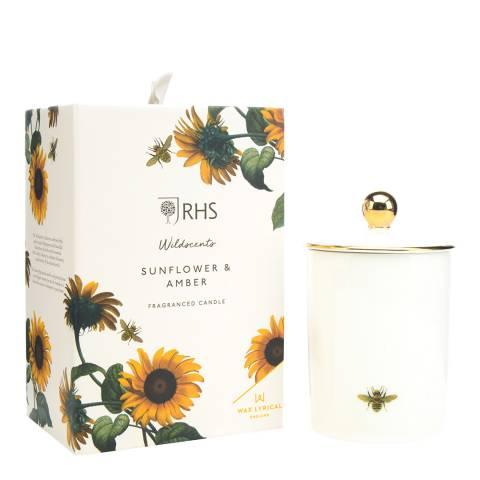 Wax Lyrical W/F Ceramic Sunflower & Amber