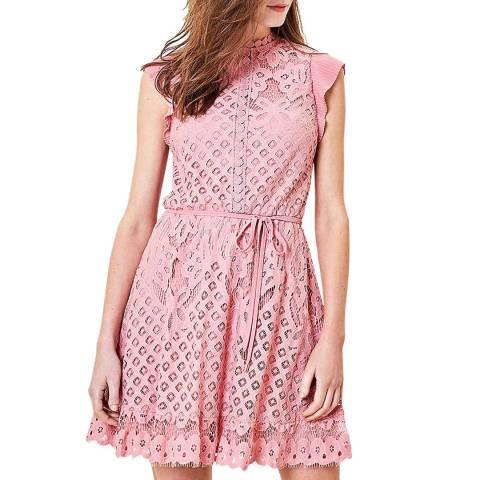 Oasis Pink Belinda Lace Skater Dress