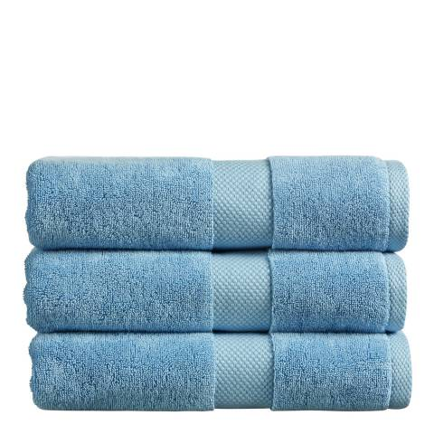 Christy Newton Pair of Hand Towels, Blue