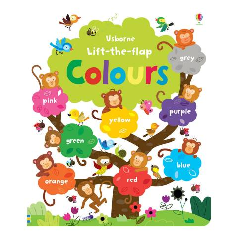 Usborne Books Lift The Flap Colours